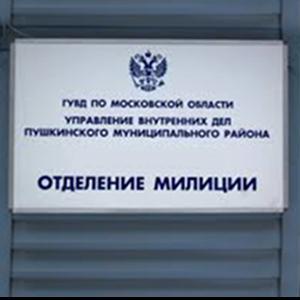 Отделения полиции Яшкули
